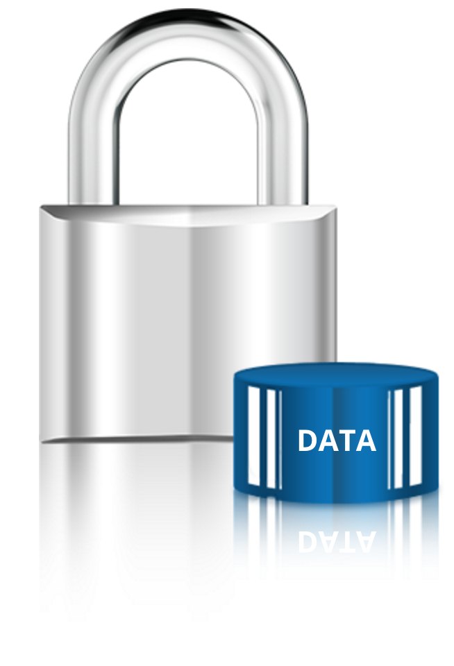Local Storage of Security Data